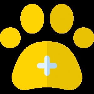Mascotas Plan Adulto
